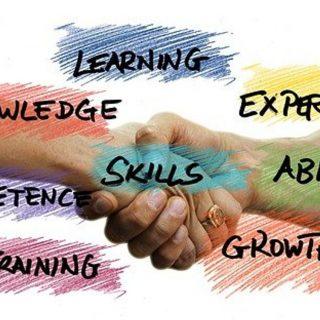 Skills Snobbery versus Success Profiles